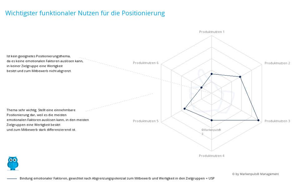 Auswertung Positionierung: das einzigartige Nutzenversprechen - der differenzierende Produktnutzen = Unique Selling Proposition (USP)